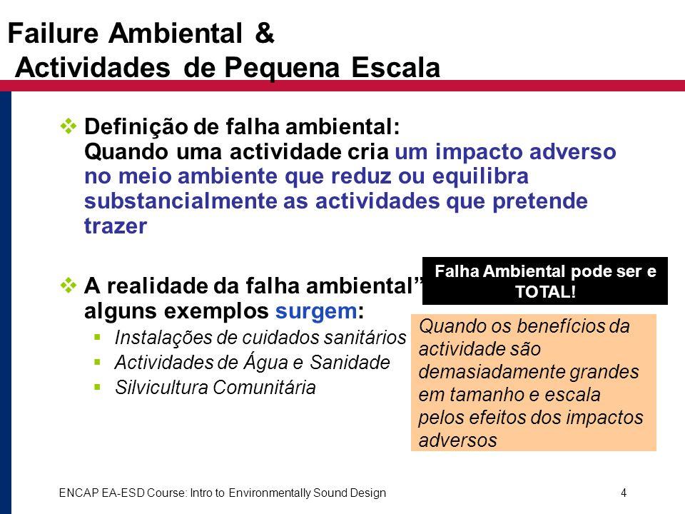 Failure Ambiental & Actividades de Pequena Escala