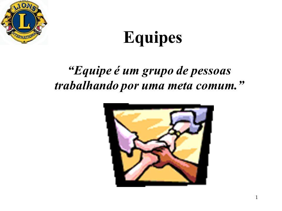 Equipe é um grupo de pessoas trabalhando por uma meta comum.