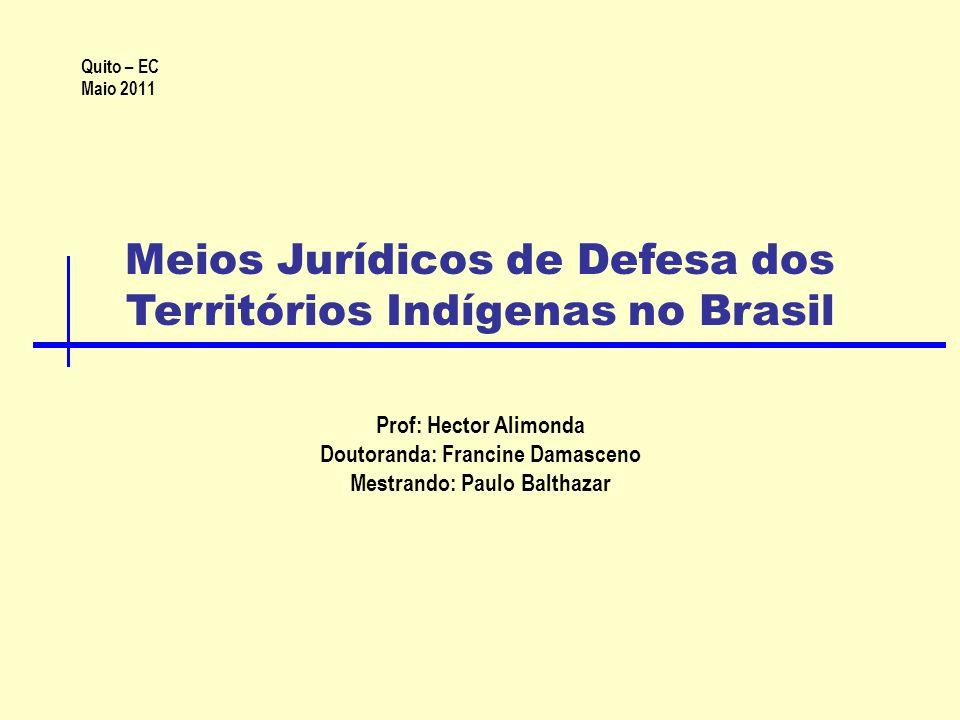 Meios Jurídicos de Defesa dos Territórios Indígenas no Brasil