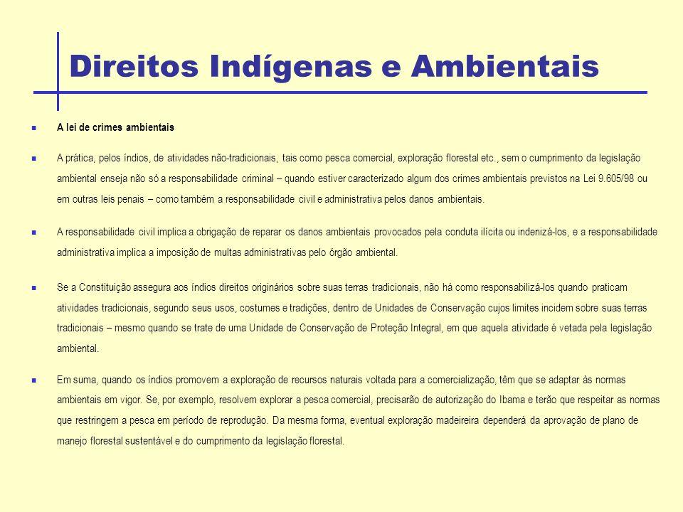 Direitos Indígenas e Ambientais