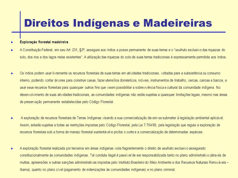Direitos Indígenas e Madeireiras
