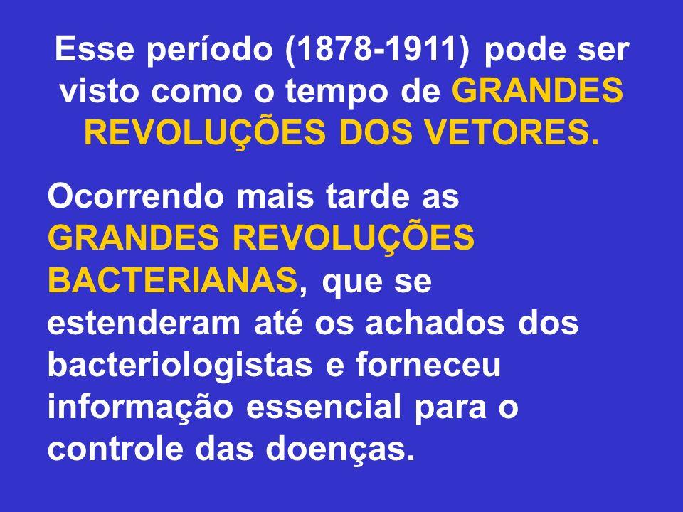 Esse período (1878-1911) pode ser visto como o tempo de GRANDES REVOLUÇÕES DOS VETORES.