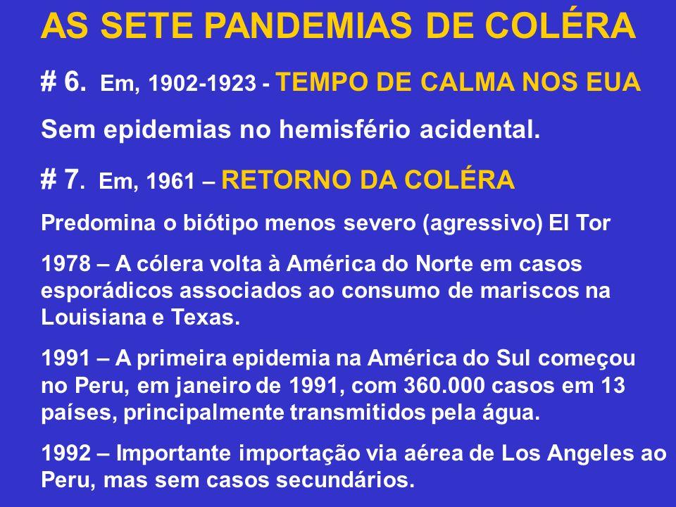 AS SETE PANDEMIAS DE COLÉRA