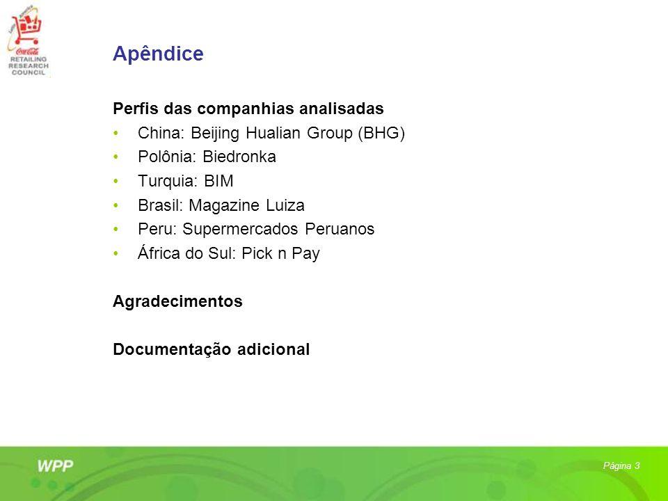 Apêndice Perfis das companhias analisadas
