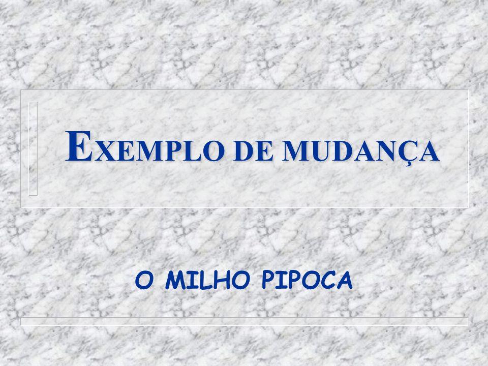 EXEMPLO DE MUDANÇA O MILHO PIPOCA