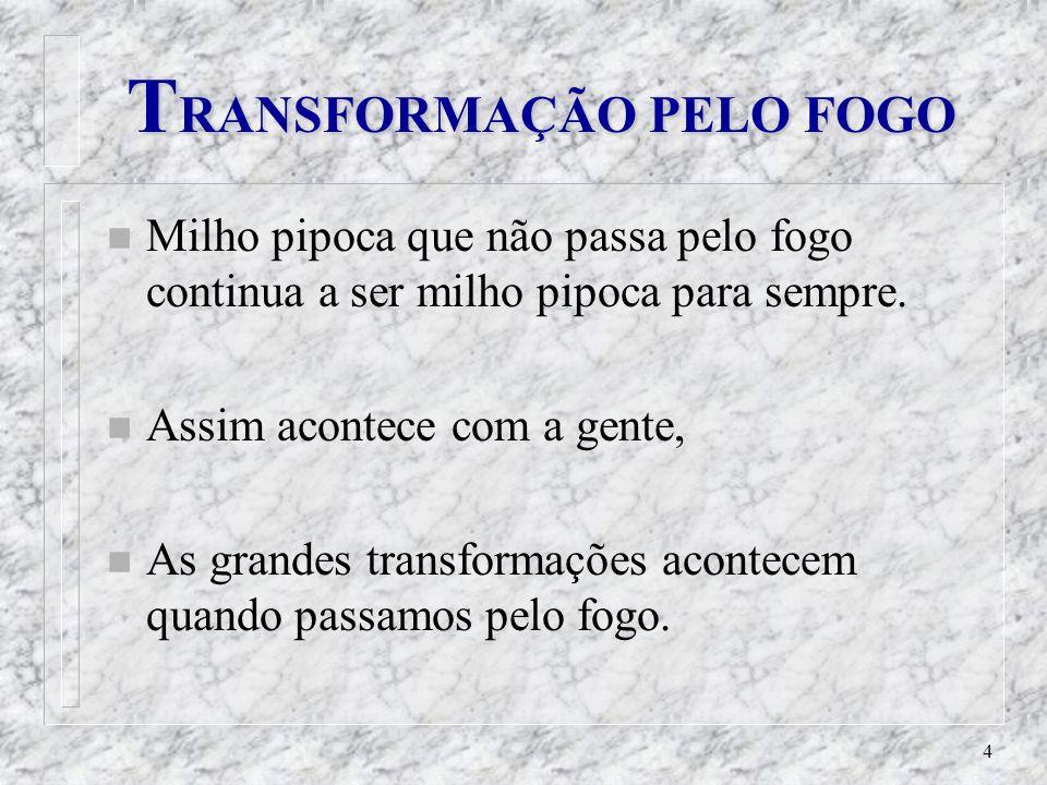 TRANSFORMAÇÃO PELO FOGO