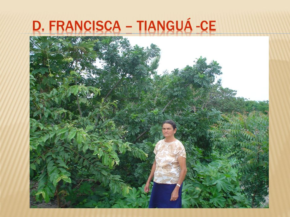 D. Francisca – Tianguá -Ce
