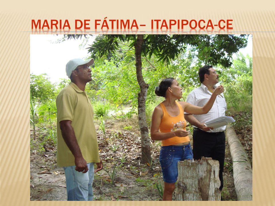 Maria de Fátima– Itapipoca-Ce