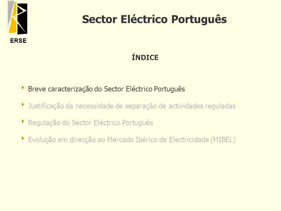 Sector Eléctrico Português
