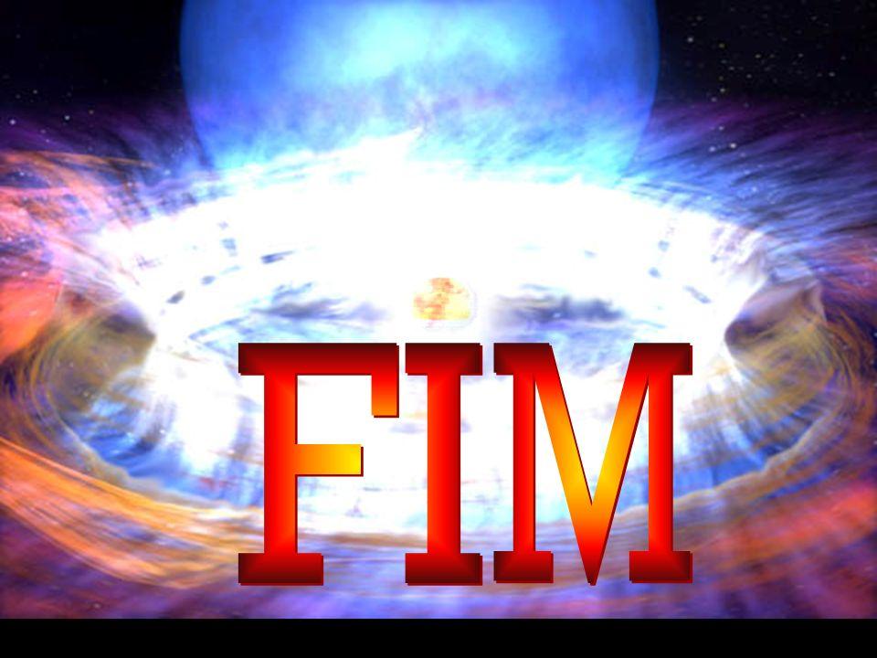 FI M.