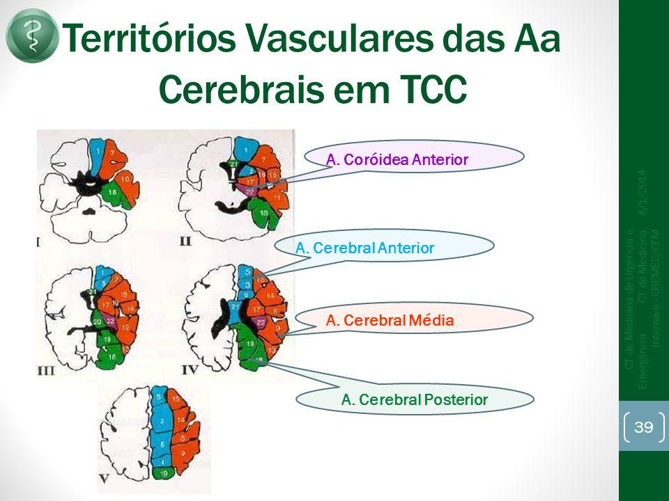 Territórios Vasculares das Aa Cerebrais em TCC