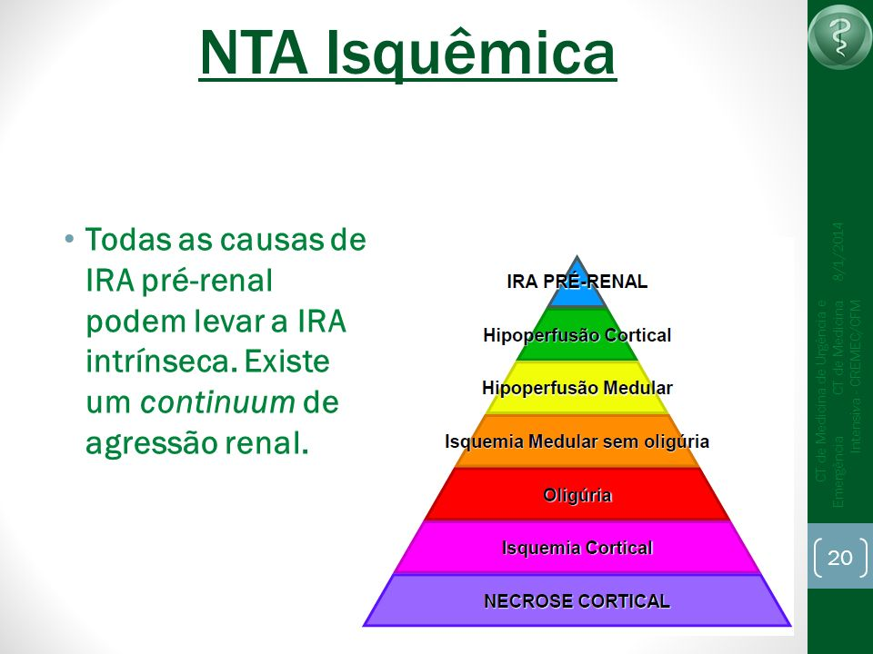 NTA Isquêmica25/03/2017. Todas as causas de IRA pré-renal podem levar a IRA intrínseca. Existe um continuum de agressão renal.