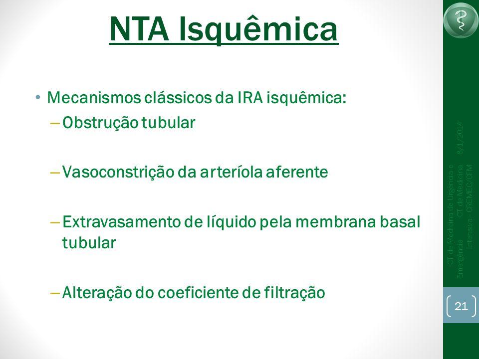 NTA Isquêmica Mecanismos clássicos da IRA isquêmica: Obstrução tubular