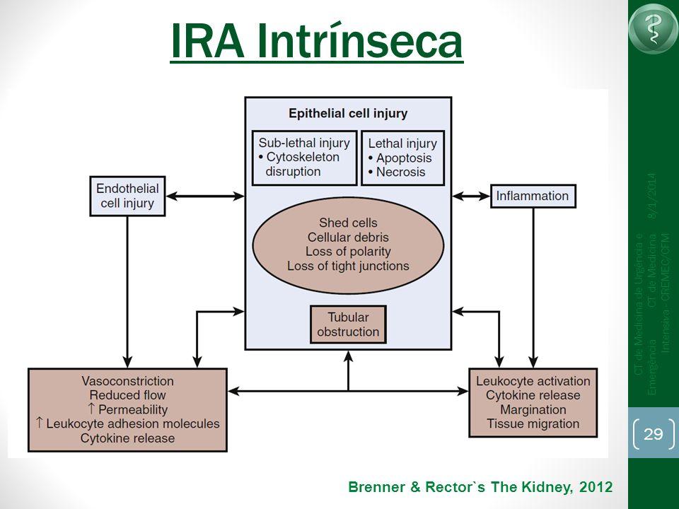 IRA Intrínseca Brenner & Rector`s The Kidney, 2012 25/03/2017