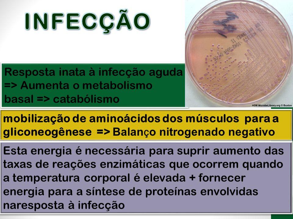 INFECÇÃO Resposta inata à infecção aguda => Aumenta o metabolismo basal => catabólismo.