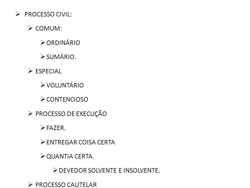 PROCESSO CIVIL: COMUM: ORDINÁRIO. SUMÁRIO. ESPECIAL. VOLUNTÁRIO. CONTENCIOSO. PROCESSO DE EXECUÇÃO.