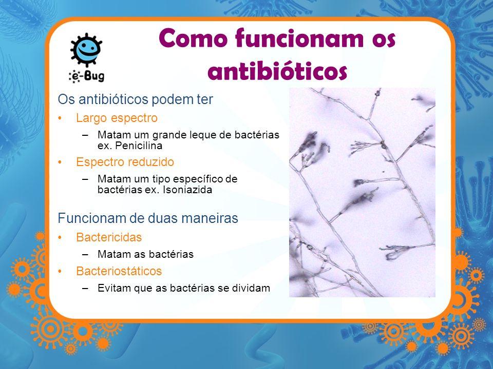 Como funcionam os antibióticos