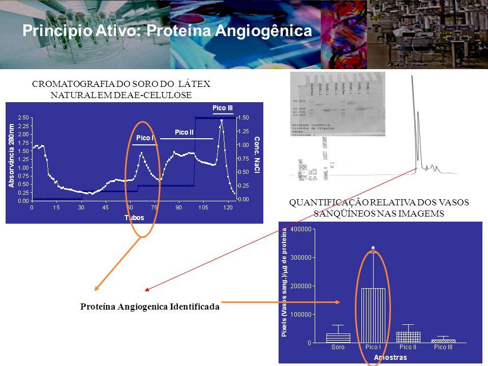 Principio Ativo: Proteína Angiogênica