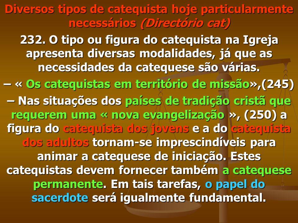 – « Os catequistas em território de missão»,(245)