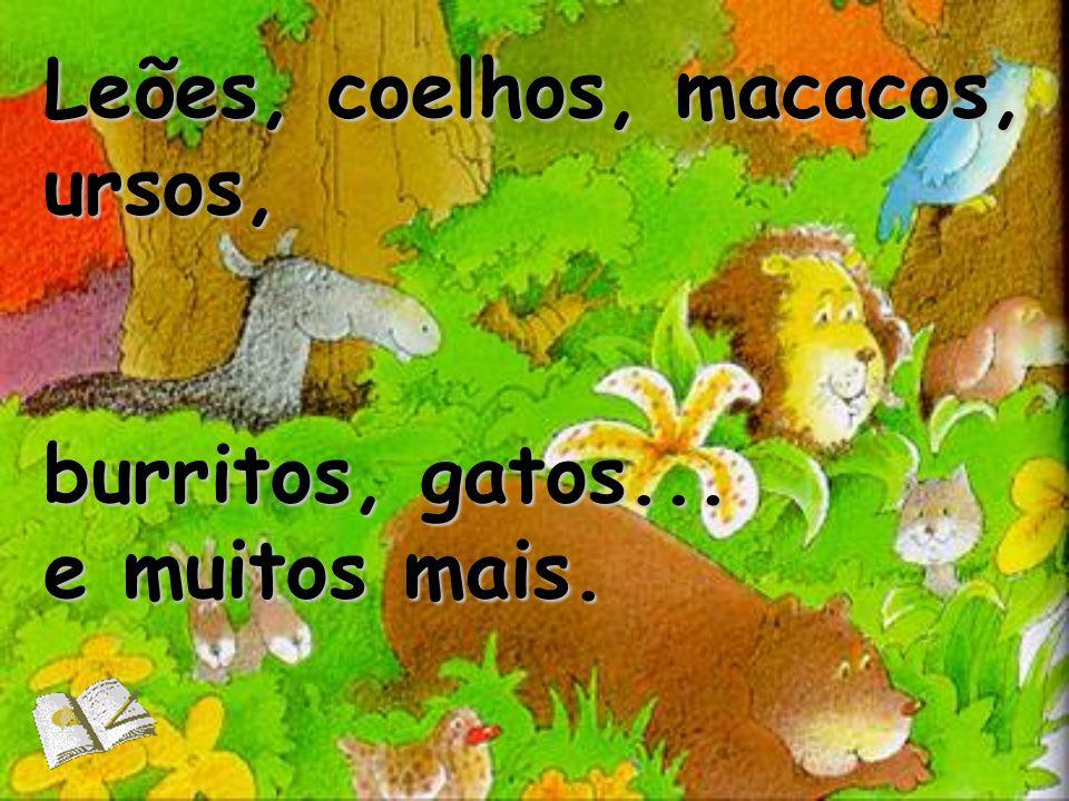 Leões, coelhos, macacos, ursos,