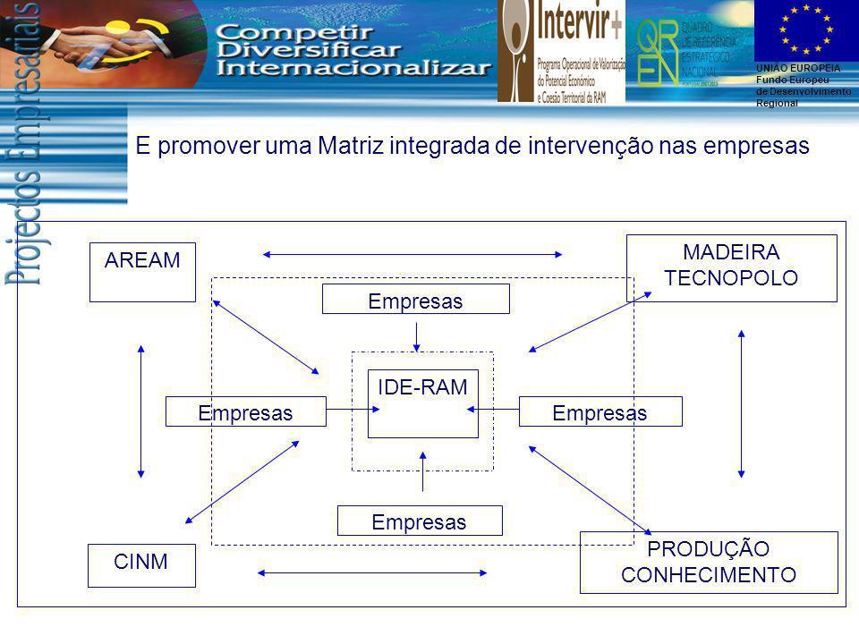 E promover uma Matriz integrada de intervenção nas empresas