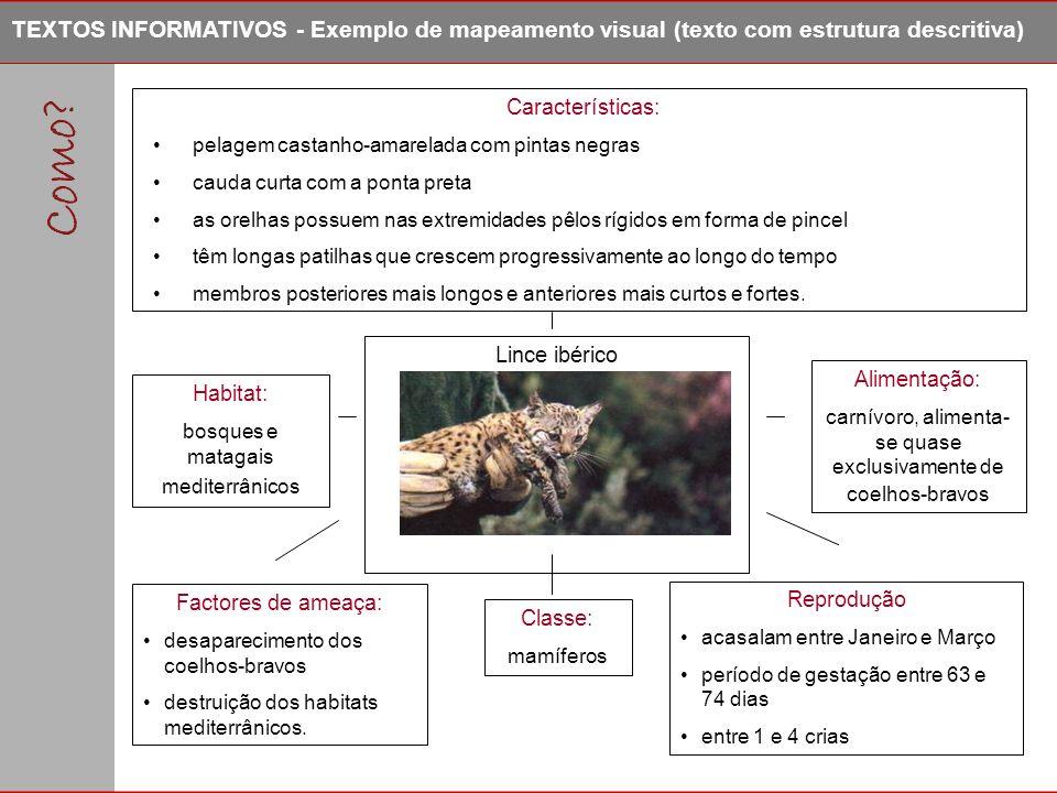 TEXTOS INFORMATIVOS - Exemplo de mapeamento visual (texto com estrutura descritiva)