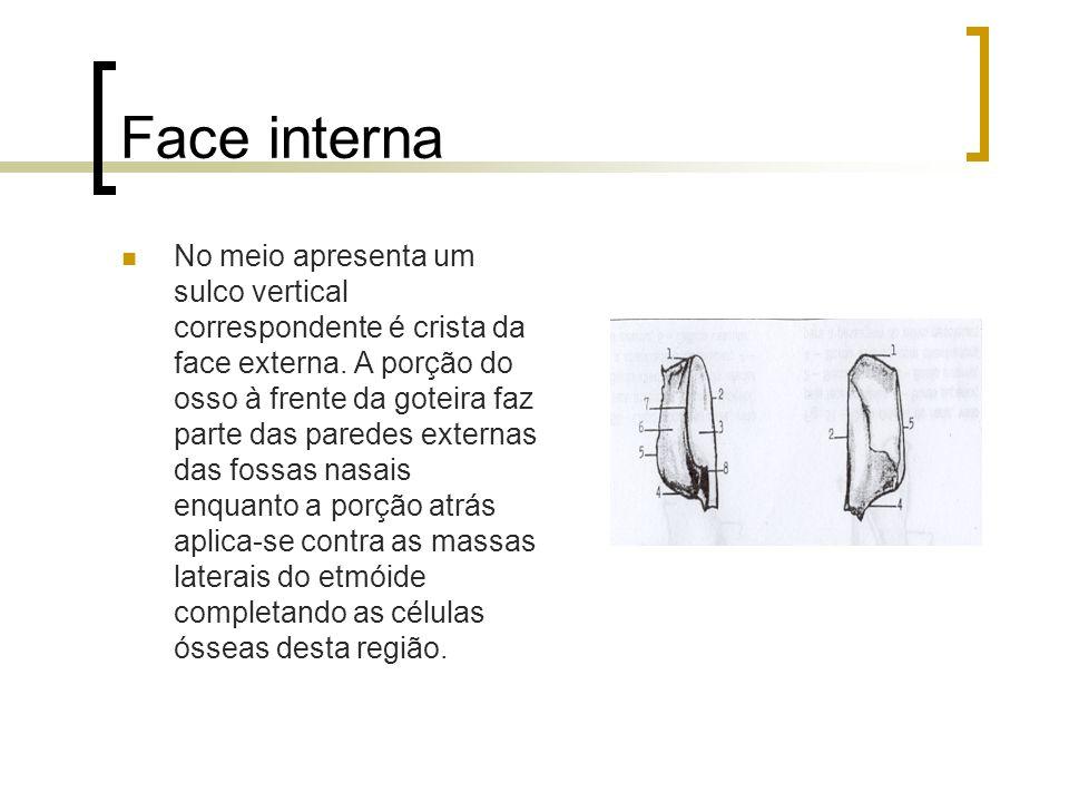 Face interna