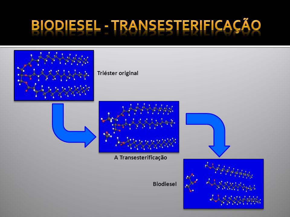 Biodiesel - Transesterificação