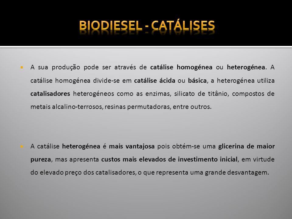 Biodiesel - Catálises