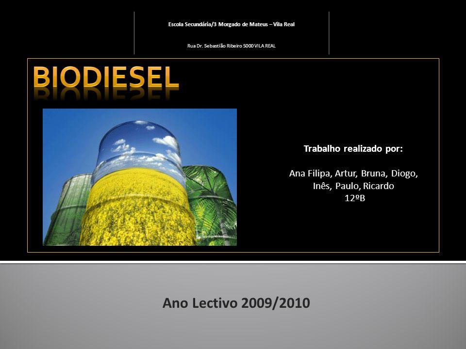 Biodiesel Ano Lectivo 2009/2010 Trabalho realizado por: