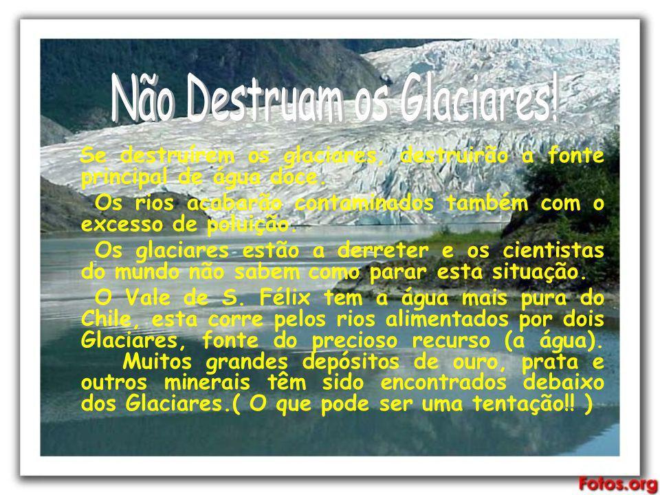 Não Destruam os Glaciares!
