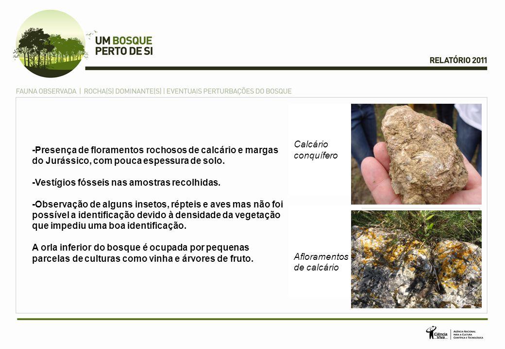 Calcário conquífero -Presença de floramentos rochosos de calcário e margas do Jurássico, com pouca espessura de solo.