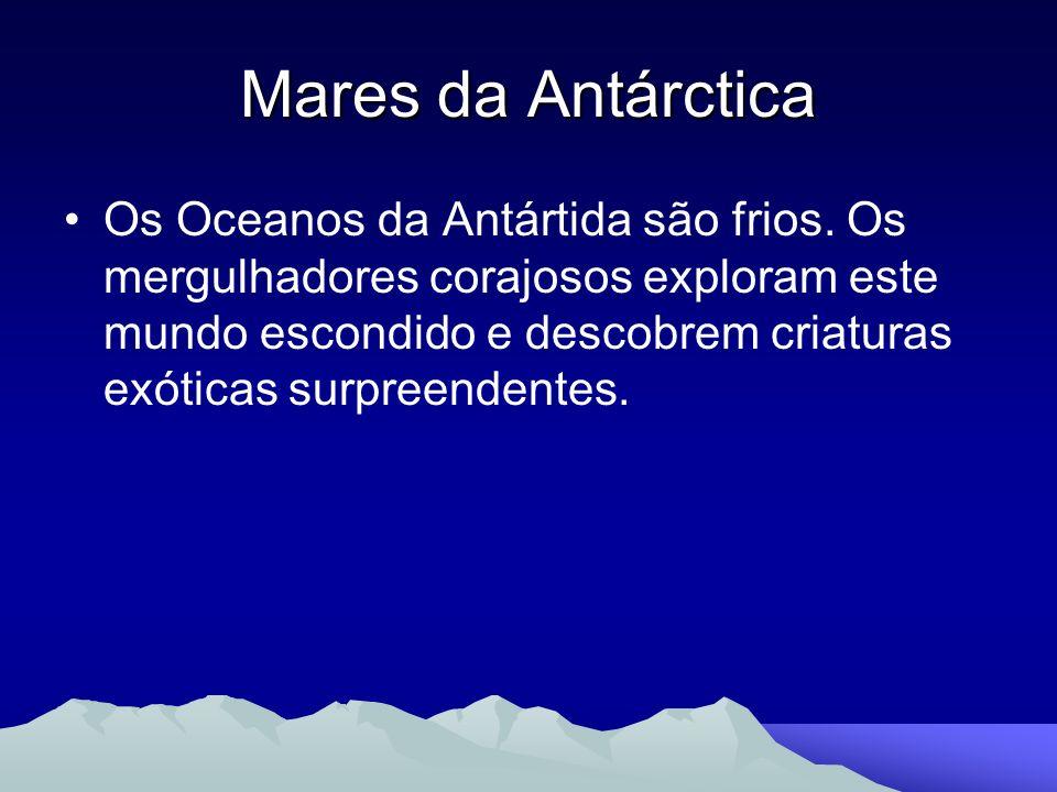 Mares da Antárctica