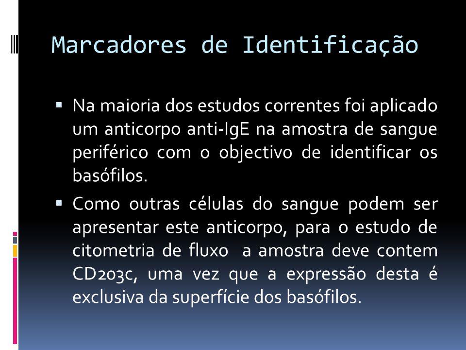 Marcadores de Identificação
