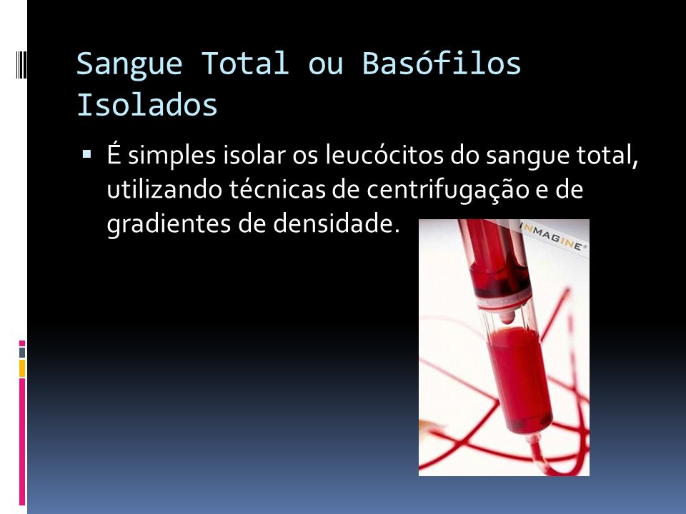 Sangue Total ou Basófilos Isolados