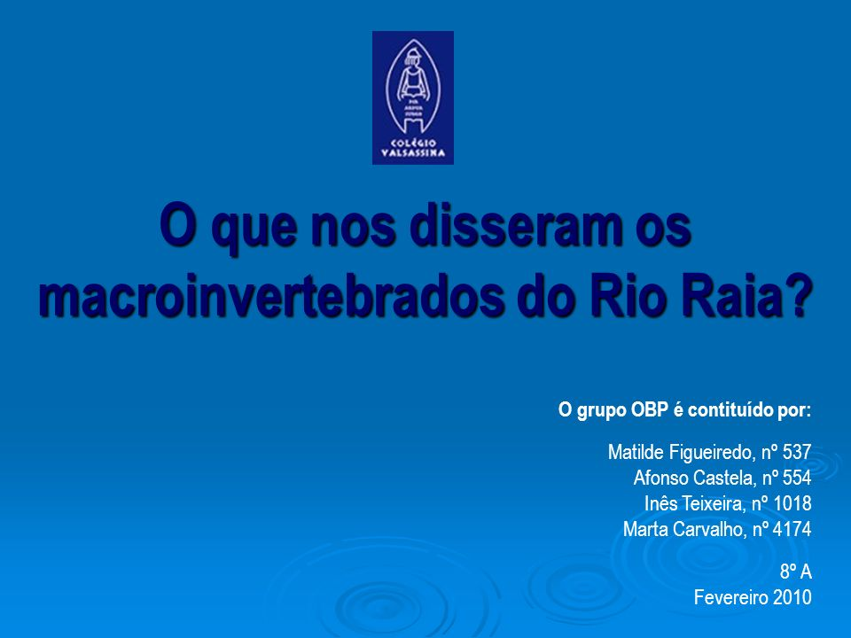 O que nos disseram os macroinvertebrados do Rio Raia