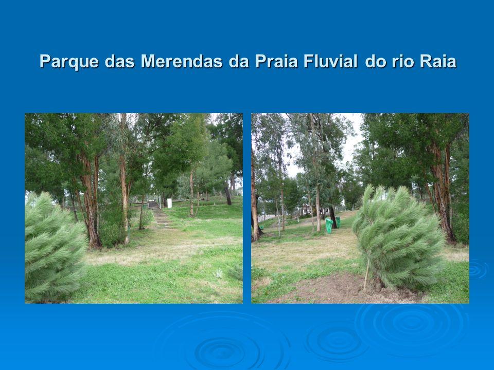 Parque das Merendas da Praia Fluvial do rio Raia