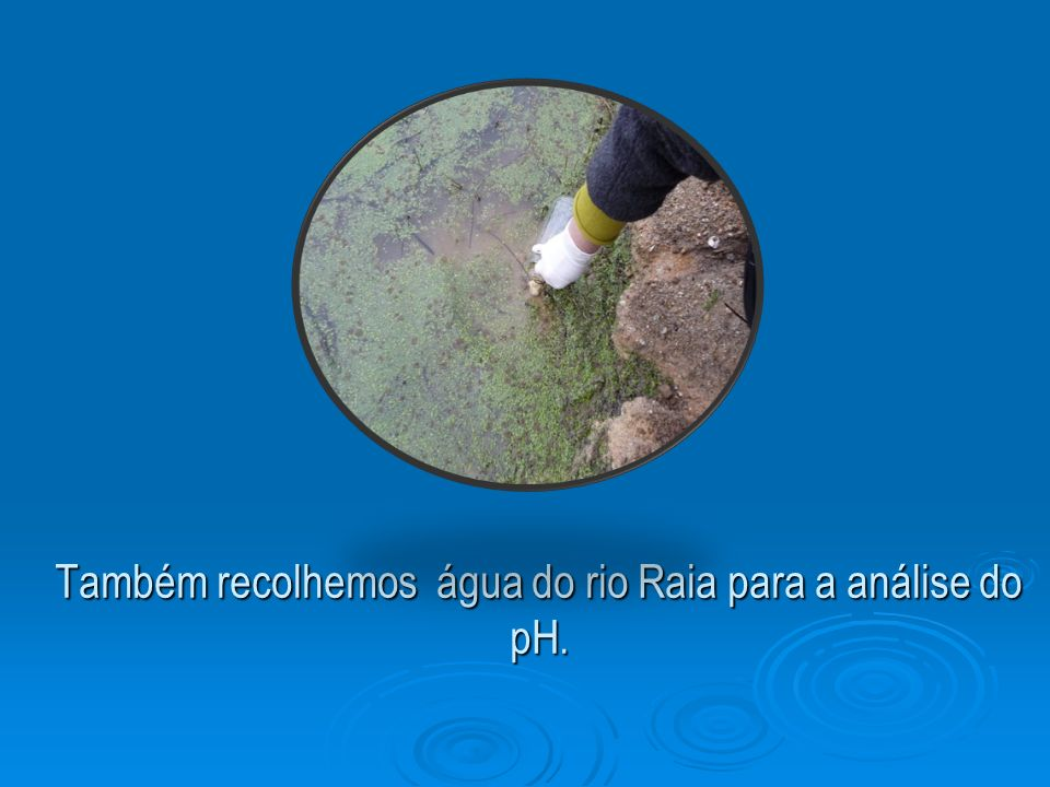 Também recolhemos água do rio Raia para a análise do pH.