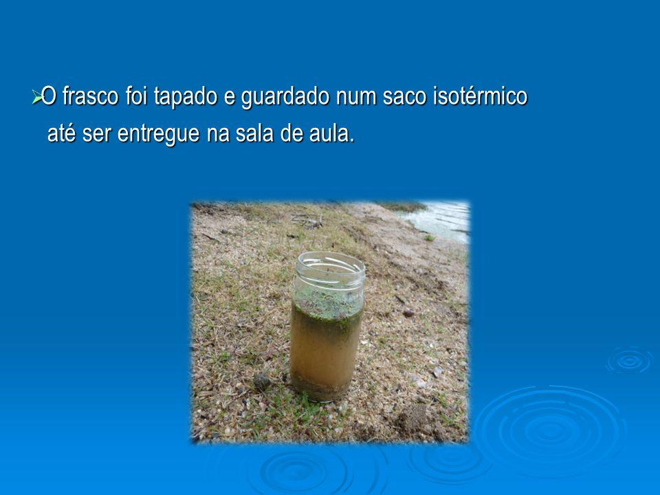O frasco foi tapado e guardado num saco isotérmico