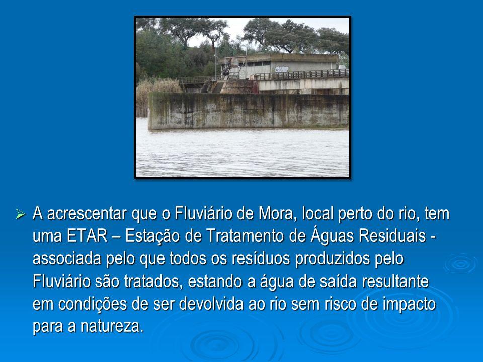 A acrescentar que o Fluviário de Mora, local perto do rio, tem uma ETAR – Estação de Tratamento de Águas Residuais - associada pelo que todos os resíduos produzidos pelo Fluviário são tratados, estando a água de saída resultante em condições de ser devolvida ao rio sem risco de impacto para a natureza.