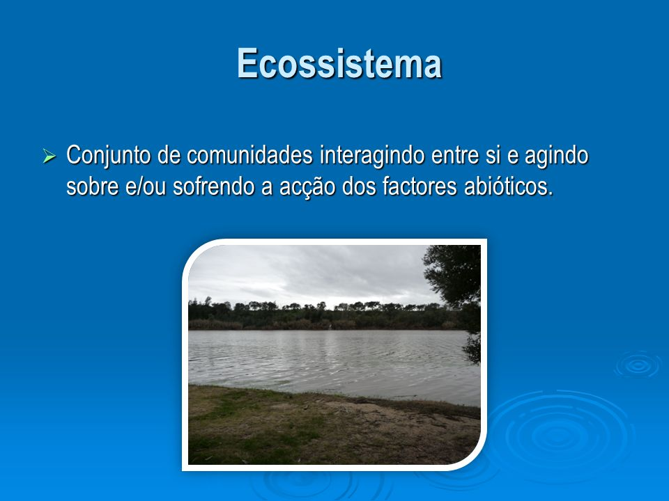 Ecossistema Conjunto de comunidades interagindo entre si e agindo sobre e/ou sofrendo a acção dos factores abióticos.