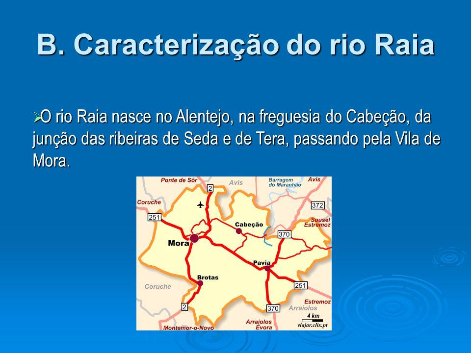 B. Caracterização do rio Raia
