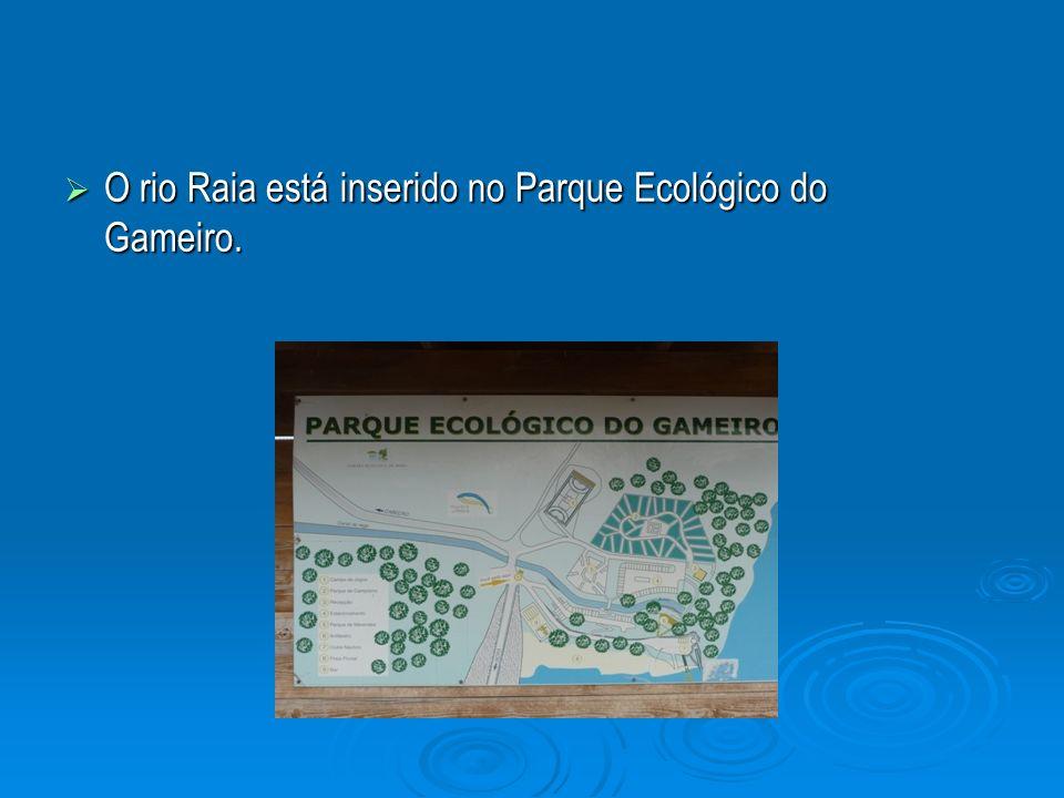 O rio Raia está inserido no Parque Ecológico do Gameiro.
