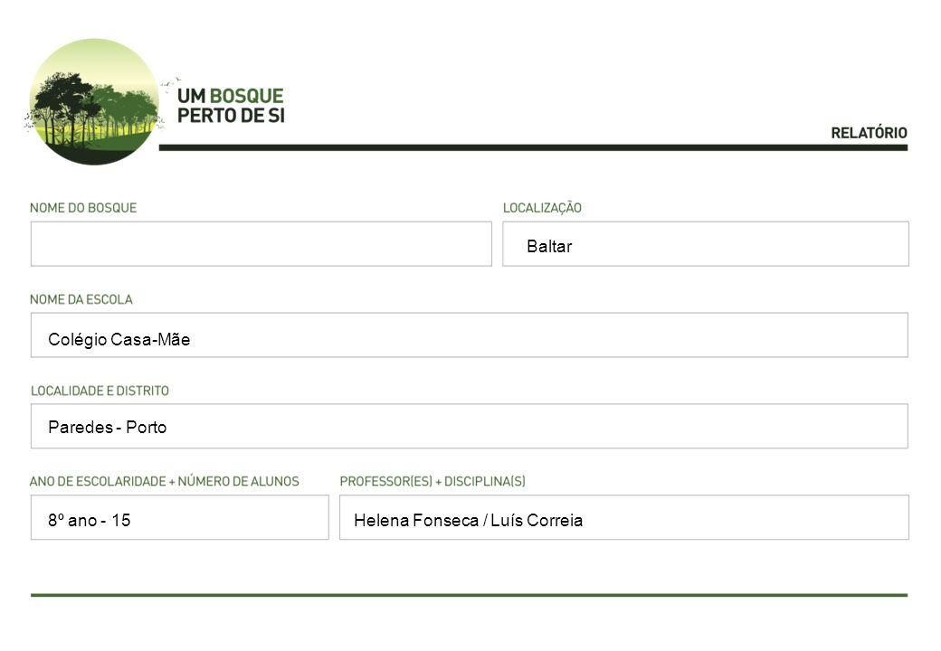 Baltar Colégio Casa-Mãe Paredes - Porto 8º ano - 15 Helena Fonseca / Luís Correia