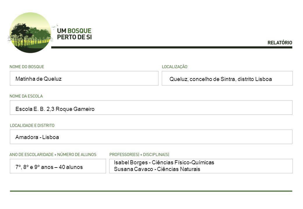 Matinha de Queluz Queluz, concelho de Sintra, distrito Lisboa. Escola E. B. 2,3 Roque Gameiro. Amadora - Lisboa.