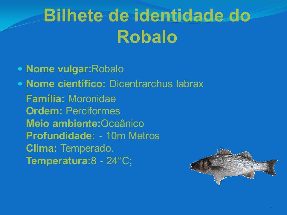 Bilhete de identidade do Robalo