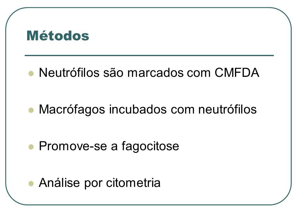 Métodos Neutrófilos são marcados com CMFDA