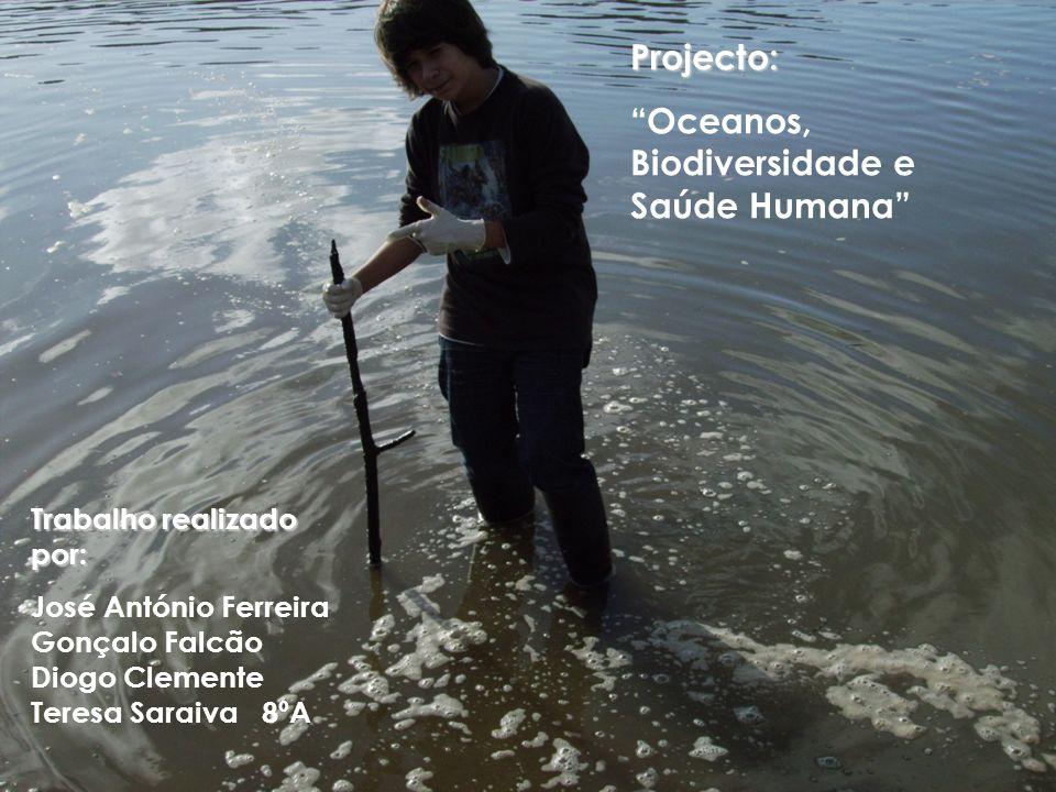 Oceanos, Biodiversidade e Saúde Humana