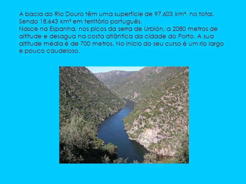 A bacia do Rio Douro têm uma superfície de 97. 603 km², no total