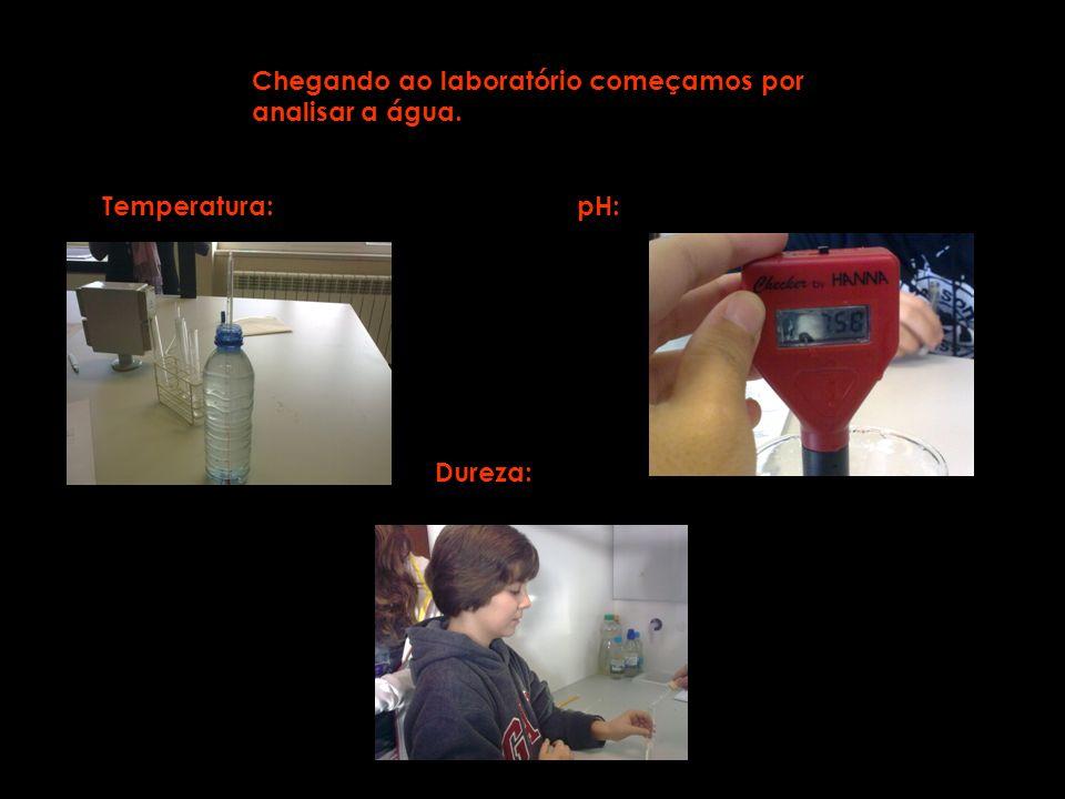 Chegando ao laboratório começamos por analisar a água.
